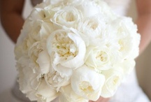 Tying the knot / All things wedding. Favors, flowers, hair, dresses, invitations, photo ideas...