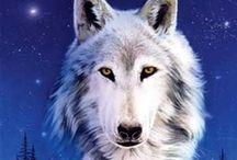Eva & Lobos & Marina / para compartir con mi amiga lobos, zorros y otros seres magnificos
