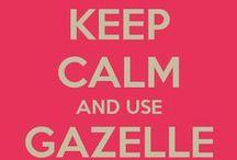 Gazelle Intensity / Inspiration for living a debt free life.