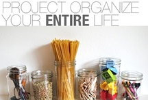 Organization & Storage / by Danielle Lee-Smith