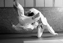 My Mixie Martial Arts (Dreams)