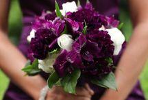Wedding Flowers / by Julie Ginzel