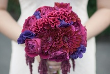 Wedding | Flowers / Flowers that inspire me for our August wedding