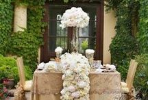 Vineyard Wedding / Vineyard Wedding Ideas & Inspiration