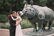 Wedding | Kim & Trent at the Bronx Zoo
