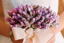 {Lilac Wedding}