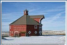 Barns 2 / by Stony Hill Farm Greenhouses, LLC