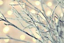 winter wonderland. / beautiful snow landscapes. / by Lauren Faith