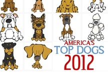 All-American Dog Breeds