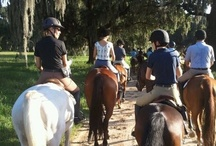 Trail Rides with Choyce Acres