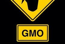 """GMO Info / """"Future historians may well look back upon our time and write, not about how many pounds of pesticide we did or didn't apply, but by how willing we are to sacrifice our children and future generations for this massive genetic engineering experiment that is based on flawed science and failed promises just to benefit the bottom line of a commercial enterprise."""" ~ Dr. Don M. Huber, Emeritus Professor of Plant Pathology, Purdue University  / by Karin Corea-Laurel"""