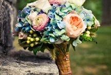 Wedding: Flowers / by Angie Broderius