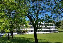 Ramstad - vision