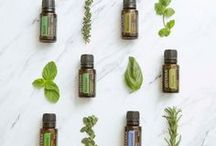 Essential Oils / Essential oils and their many uses.