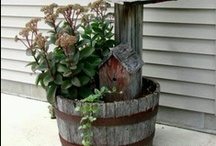 gardening and outdoors / flowers, etc. / by Debra Hampton