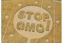 Our World: GMO / by Yolande