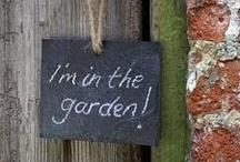In The Garden... / by Teresa Livingston