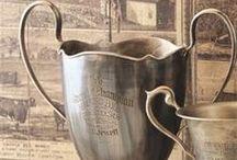 Trophy Cups / by Teresa Livingston