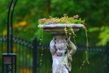 Garden Statuary  / by Teresa Livingston