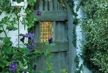 Doors / by Anita Ferris