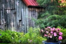 Country Home / by Anita Ferris