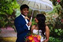 Umbrellas / Vintage umbrellas are such a fun wedding accessory!