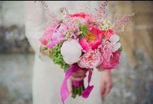 Foxgloves & Roses / My flowers