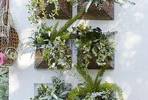 Garden Accessories / by Nancy Ash