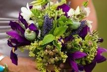 Lindsay's May wedding