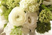 Hannah's wedding (May)