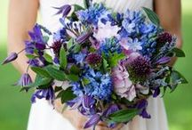 Hannah's August flowers / Late summer wedding flowers in purple and blue.
