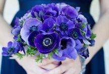 Ruth's February wedding / Wedding flowers for Ruth.