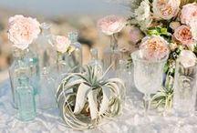 Wedding | Beach / Lovely ideas for a beautiful beach wedding / by Greenvelope.com
