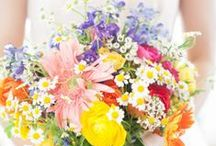 Ideas for Samantha & Nick / Ideas for summer country wedding.