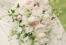 Ideas for Rachel's August wedding / Flowers for an August wedding