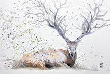Illustrations douces et colorées / De jolies dessins, des illustrations graphiques, watercolor... Des petits éléments pour rêver, s'inspirer, aimer la nature et la vie !