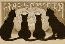 Spooky Halloween / I'm scared already. / by Schnacks