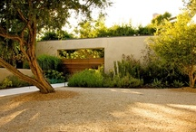 Waterwise Landscaping / Get tips and style advice for landscaping with waterwise plants at: http://www.landscapingnetwork.com/garden-styles/Xeriscape-Design-Sheet.pdf