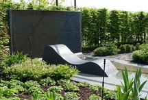 Privacy Screening / Get ideas and inspiration for creating a privacy screen at: http://www.landscapingnetwork.com/landscaping-ideas/privacy/