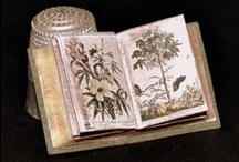 Miniature books (see also Dollshouses, Miniatures) / My own uploads are a small portion of my own huge dollshouse library