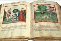 Illuminated manuscripts & early printed books / Sheer beauty, from the past