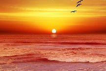 Sunrise - Sunset / by Lisa Eads