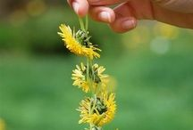 Spring Kids / Making the most of the Spring! Springtime-themed seasonal activities, crafts and play ideas for kids.