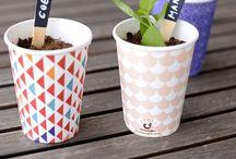 Grow / Small vegetable garden ideas  / by Eva