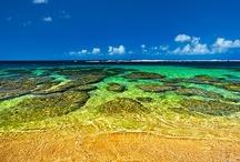 Kauai / Find more Peek tips, tours, and other offerings for Kauai at https://www.peek.com/hawaii/kauai/