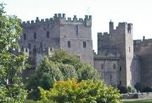 """Castles / Blame it on the fairy tales I was told as a child, but my """"Princess"""" alter ego loves castles and I would love to visit all of these!"""