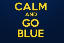 Go Blue!! / by Heather Dombos