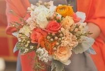 Nectarine Wedding / Wedding colour scheme - orange, nectarine, tangerine, apricot.