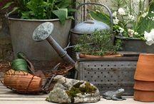 Gardener's Delights / by Dara Inman