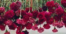 Marsala / Burgundy Wedding Inspiration / Wedding inspiration for burgundy and marsala themes